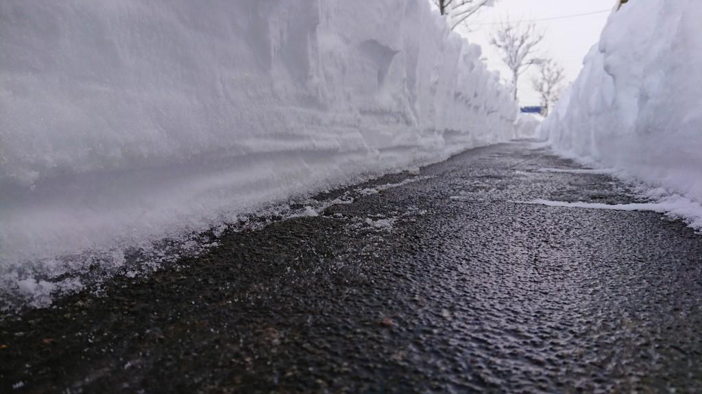 雪の大谷!?