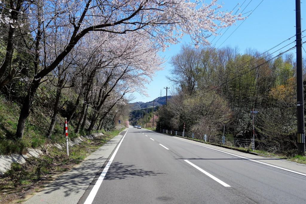 SOLID金沢 通勤中